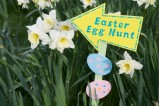 TAC Sponsored Easter Egg Hunt