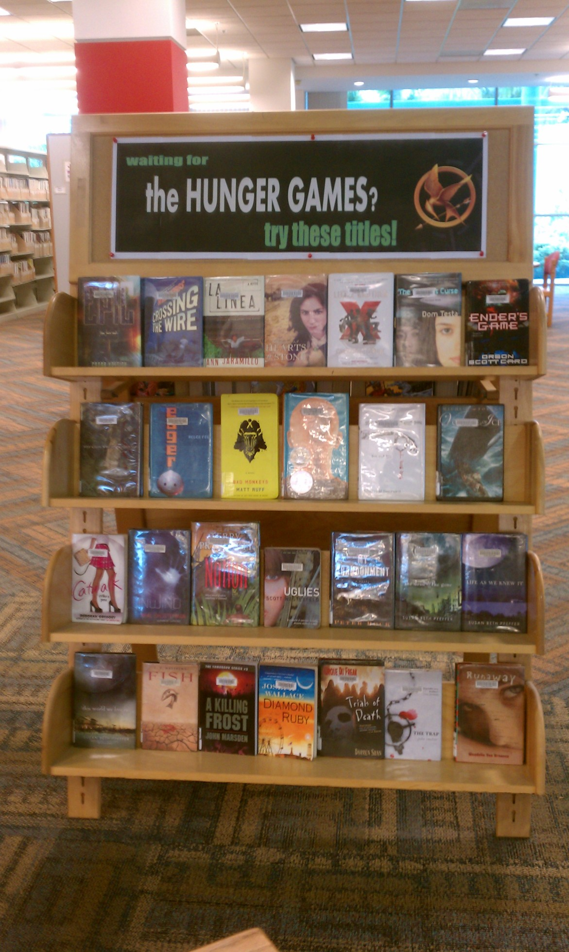 Hunger Games Display